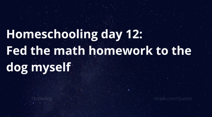 Homeschooling day 12: Fed the math homework to the dog myself